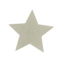Magnete a forma di stella Personalizzato