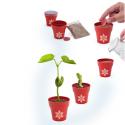 Vaso Natalizio con vero seme Personalizzato