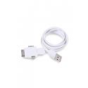 Cavetto di ricarica USB Tet Personalizzato